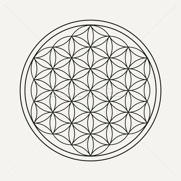 Flower of life mandala for yoga background Stock photo © cienpies