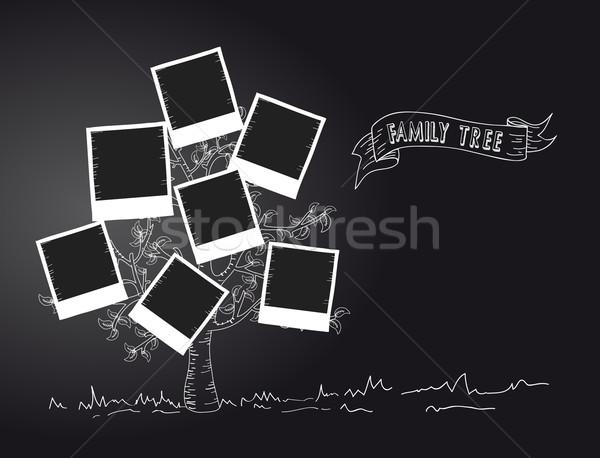 Klasszikus azonnali fotó fa feketefehér levél Stock fotó © cienpies