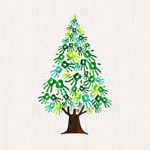 Yeşil çam ağacı insan eller doğa yardım Stok fotoğraf © cienpies