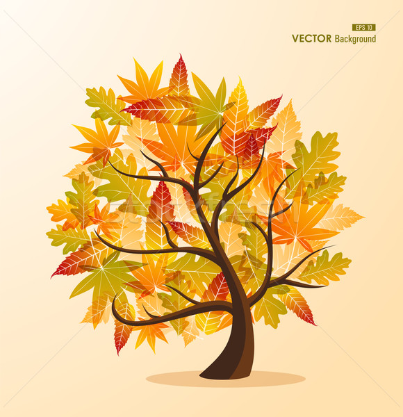 Fall season tree concept with leaves EPS10 file background. Stock photo © cienpies