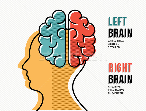 Left and right brain concept with head silhouette Stock photo © cienpies
