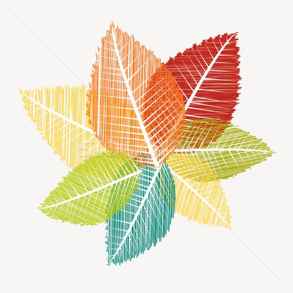 カラフル 抽象的な 透明な 葉 秋 eps10 ストックフォト © cienpies