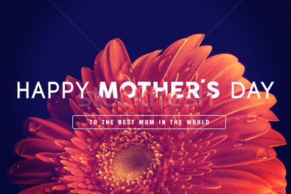 Happy Mothers day greeting card Stock photo © cienpies