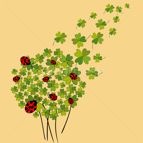 Lucky spring clover Stock photo © cienpies