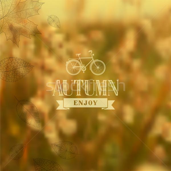 Autumn vintage blurred background Stock photo © cienpies