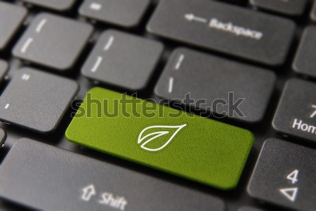 Stockfoto: Groene · energie · computer · sleutel · natuur · helpen · knop
