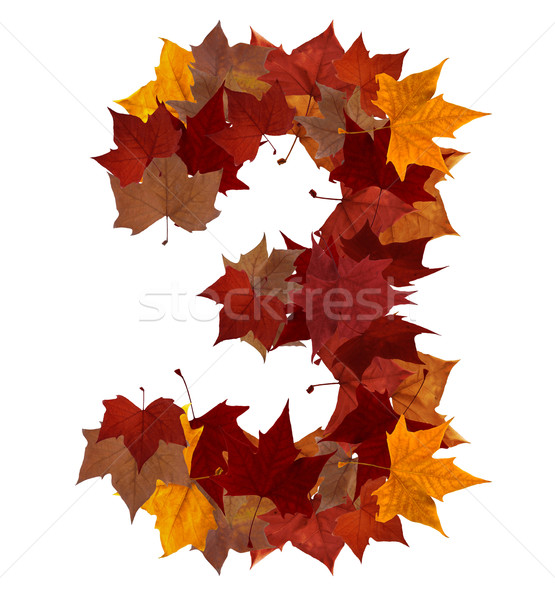Number three multicolored fall leaf composition isolated Stock photo © cienpies