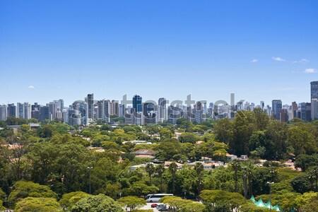 Sao Paulo város Brazília park kilátás házak Stock fotó © cifotart