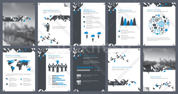 Elements of infographics for report template and presentations templates Stock photo © cifotart
