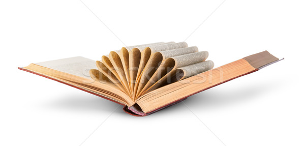 Ajar old book with curled pages Stock photo © Cipariss