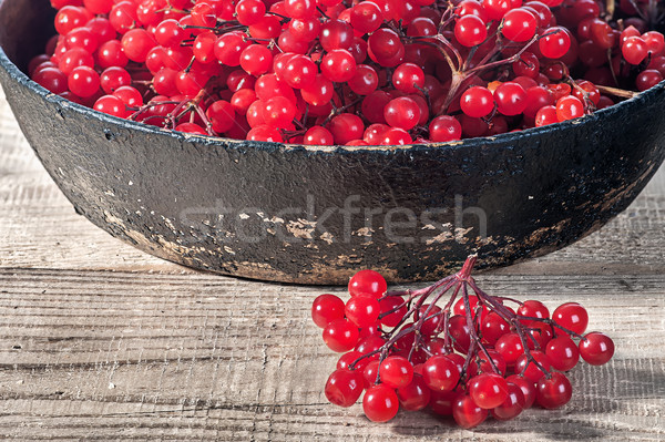 Closeup viburnum in cast iron frying pan Stock photo © Cipariss
