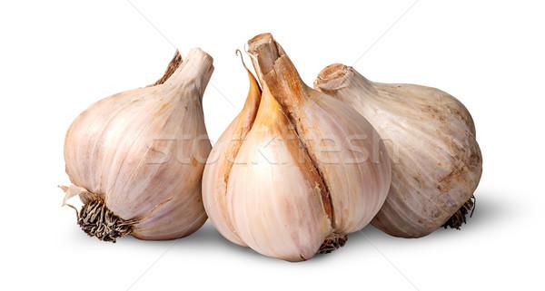 Three bulbs of garlic beside Stock photo © Cipariss