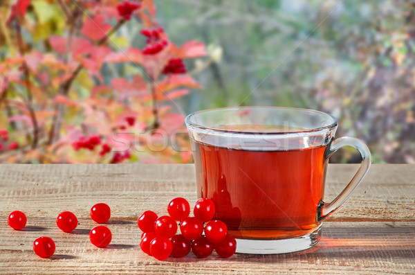 Tea with viburnum berries on wooden table Stock photo © Cipariss