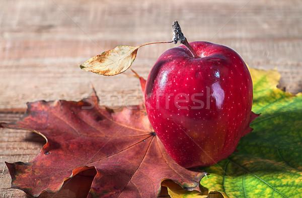 Elma sonbahar yaprakları eski ahşap masa ahşap dizayn Stok fotoğraf © Cipariss