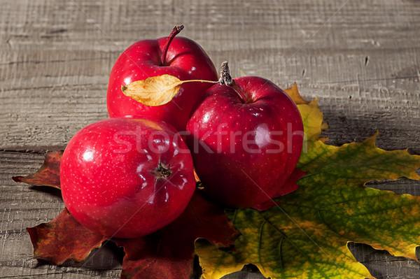 Kırmızı elma akçaağaç yaprakları sonbahar sarı Stok fotoğraf © Cipariss