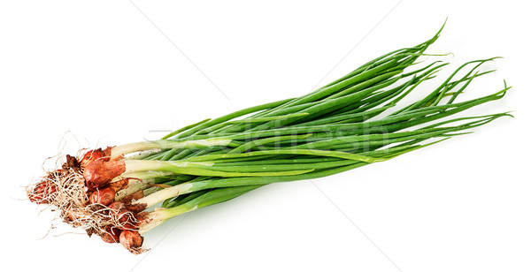 Bunch of young green onions Stock photo © Cipariss