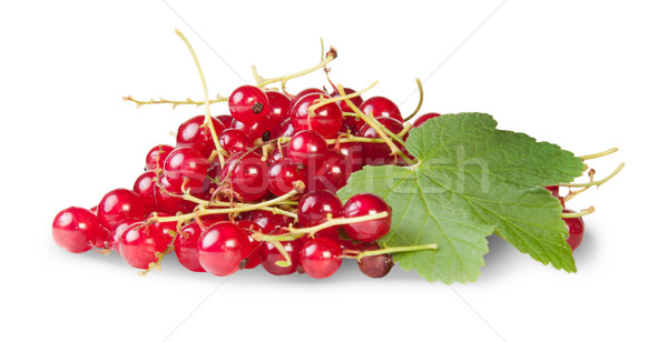 Bunch Of Red Currants With Currant Leaves Rotated Stock photo © Cipariss