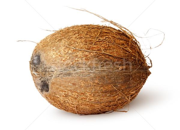 Coconut lying horizontally Stock photo © Cipariss