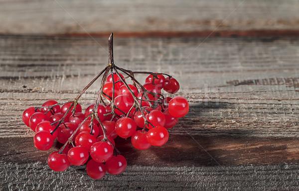 ág perem asztal egy lédús hazugságok Stock fotó © Cipariss