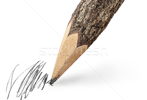 Writing unusual pencil in the form of logs Stock photo © Cipariss