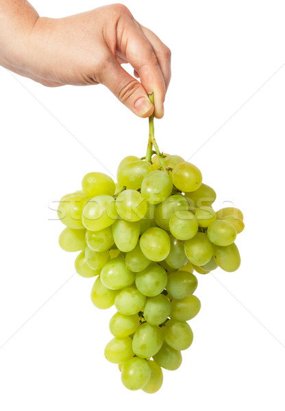 Hand holding a bunch of grapes Stock photo © Cipariss