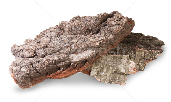 Pieces Of Dry Bark Of Birch And Oak Stock photo © Cipariss
