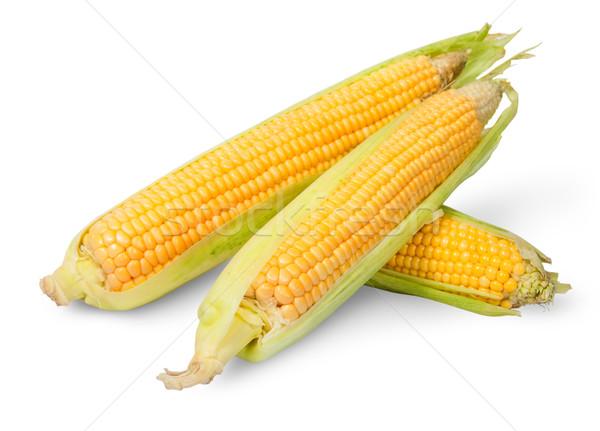 Three partially peeled corn cob lying cross Stock photo © Cipariss