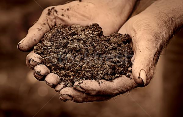 Elderly man holding soil in hands Stock photo © Cipariss