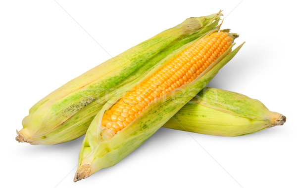 Three cross lying corn cob Stock photo © Cipariss