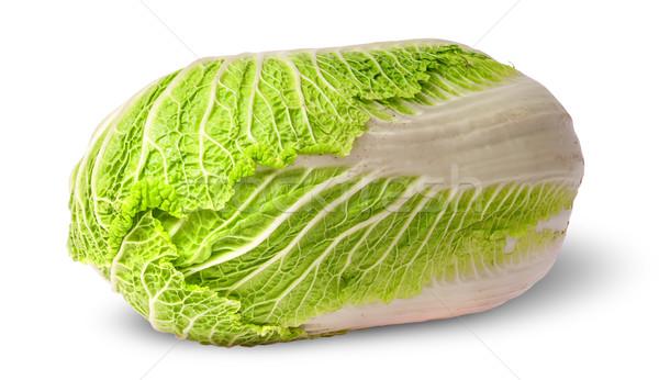 Çin lahana yalıtılmış beyaz gıda yaprak Stok fotoğraf © Cipariss