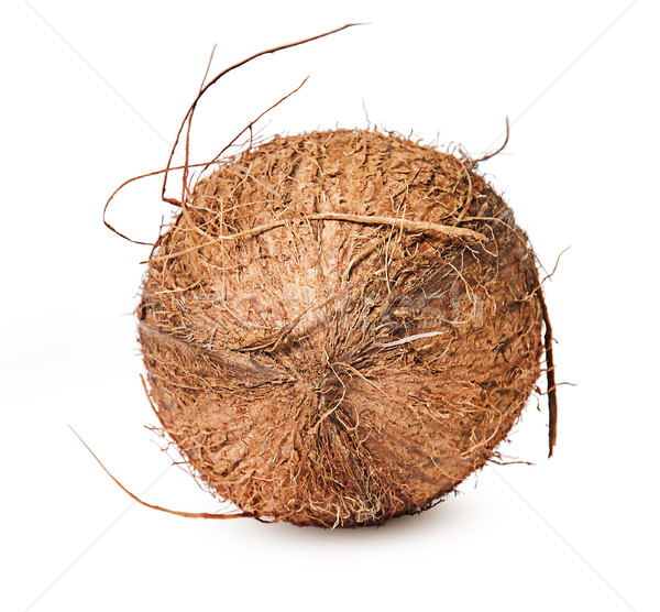 Coconut lying on the side of top Stock photo © Cipariss