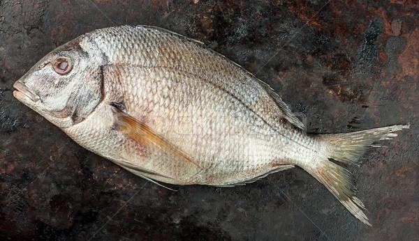 Fresh Dorado fish Stock photo © Cipariss
