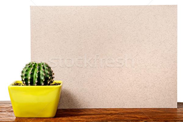 Kaktusz asztal bézs tábla izolált fehér Stock fotó © Cipariss