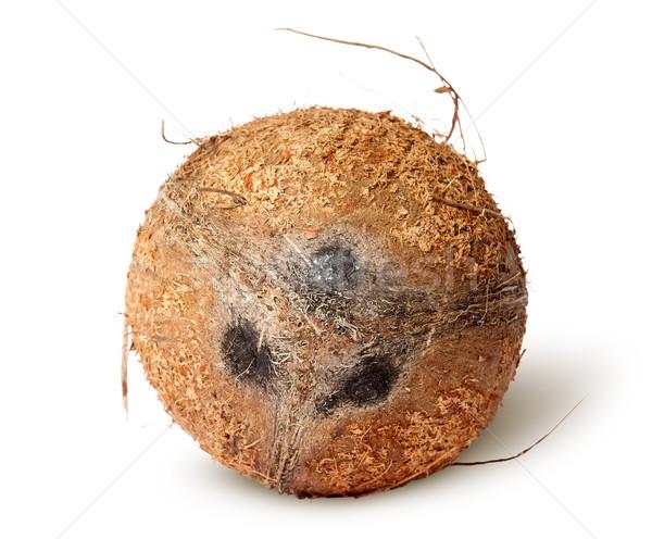 Coconut top view Stock photo © Cipariss