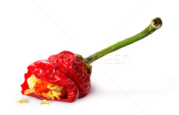 Piece red hot chili pepper with seeds Stock photo © Cipariss