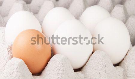 Beş beyaz bir kahverengi yumurta tepsi Stok fotoğraf © Cipariss
