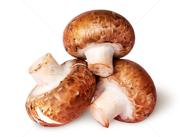 Three whole fresh brown champignons Stock photo © Cipariss