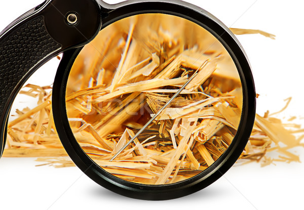 Magnifier enlarges a needle in haystack Stock photo © Cipariss