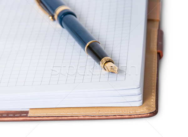 Caneta-tinteiro topo abrir caderno isolado Foto stock © Cipariss