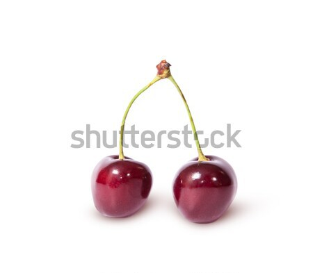 Two burgundy sweet cherries Stock photo © Cipariss
