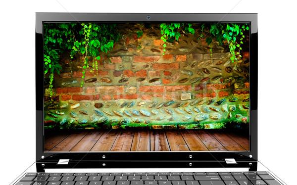 ноутбука стены Focus экране кирпичная стена плющ Сток-фото © cla78