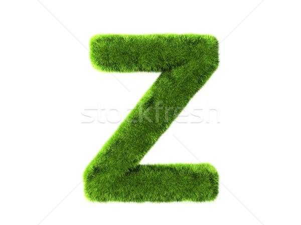 Grass z Stock photo © cla78