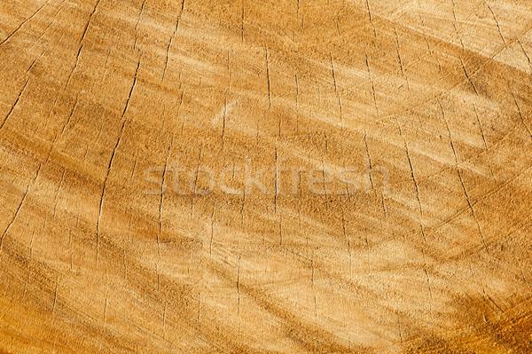 Wood texture Stock photo © cla78