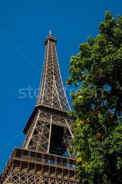 Tur eiffel görüntü Paris bitki gökyüzü Stok fotoğraf © cla78