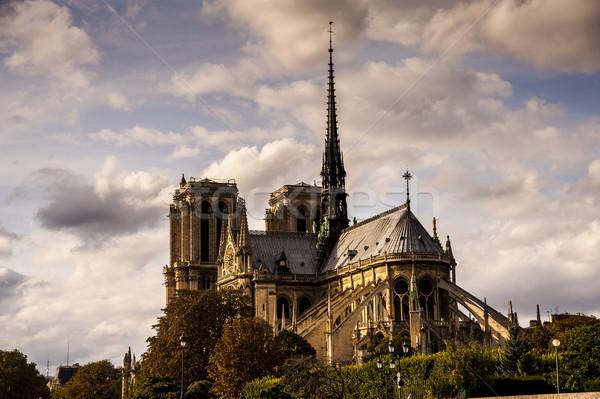 Notre Dame in Paris Stock photo © cla78