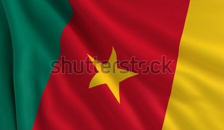 Vlag Kameroen wind textuur achtergrond star Stockfoto © cla78
