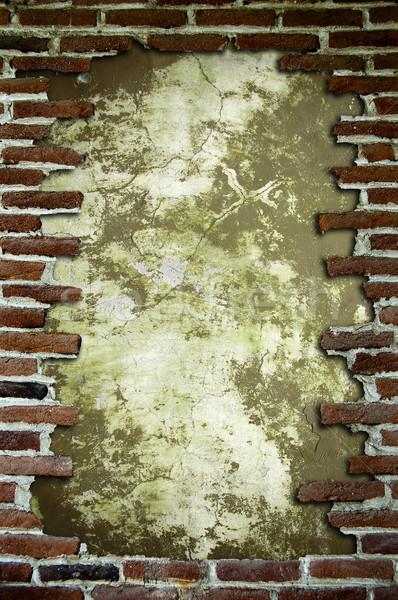 Frame with brick Stock photo © cla78