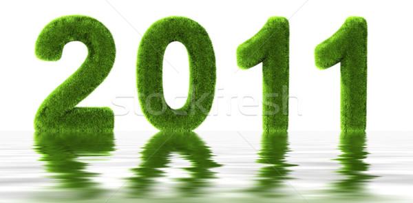 Trawy 2011 wody dziedzinie zielone sylwetka Zdjęcia stock © cla78