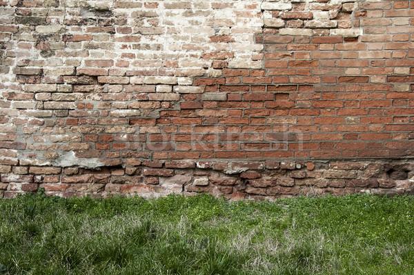 Brick wall and grass Stock photo © cla78