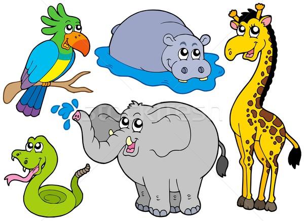 Wildlife animals collection Stock photo © clairev